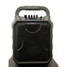 """PA 8"""" System XPA-E08-HF2 With Two Hands-free Wireless Microphones"""